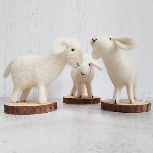 Needleflet lambs