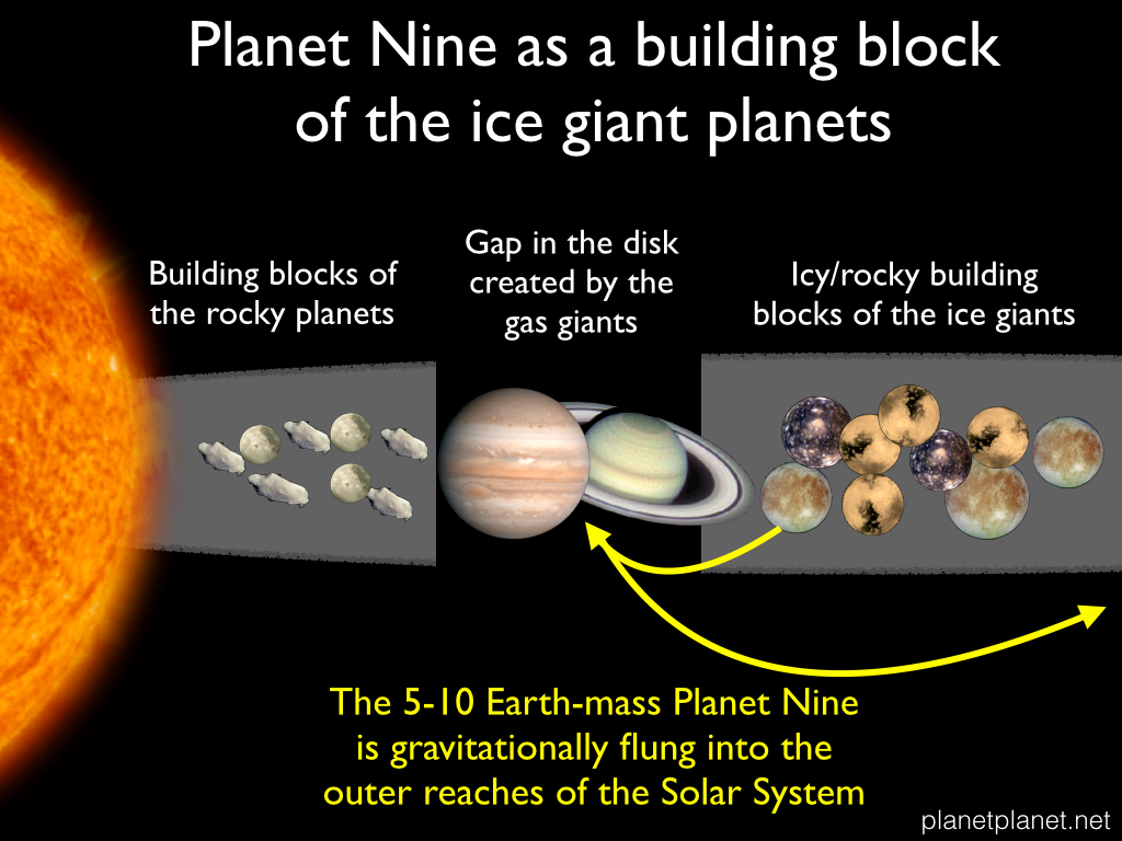 Planet Nine Solar System Renegade