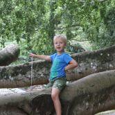 Ed in Crazy Tree
