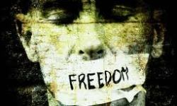 freedom-not