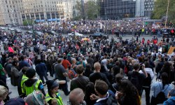 800_occupy_wall_street_ap_11091005