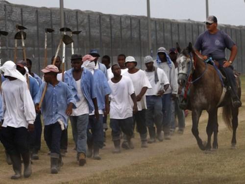 angola-prison-louisiana