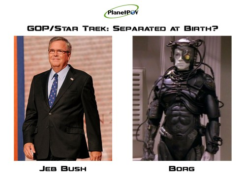 Bush Borg