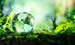 enviro earth