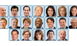 D candidates