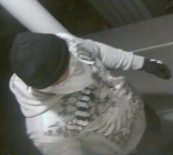Princeton Burglar 1