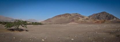 1-peru-nazca-42
