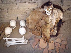 Chauchilla Cemetery Shaman Mummy