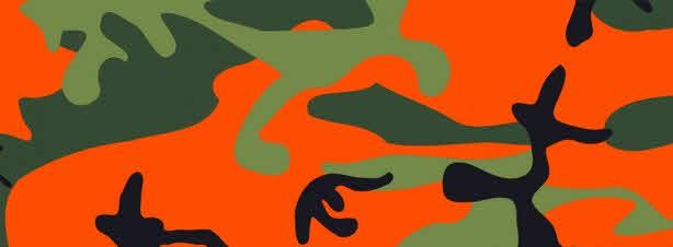 Camouflage des frais