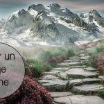 ¿Como elegir un viaje online?