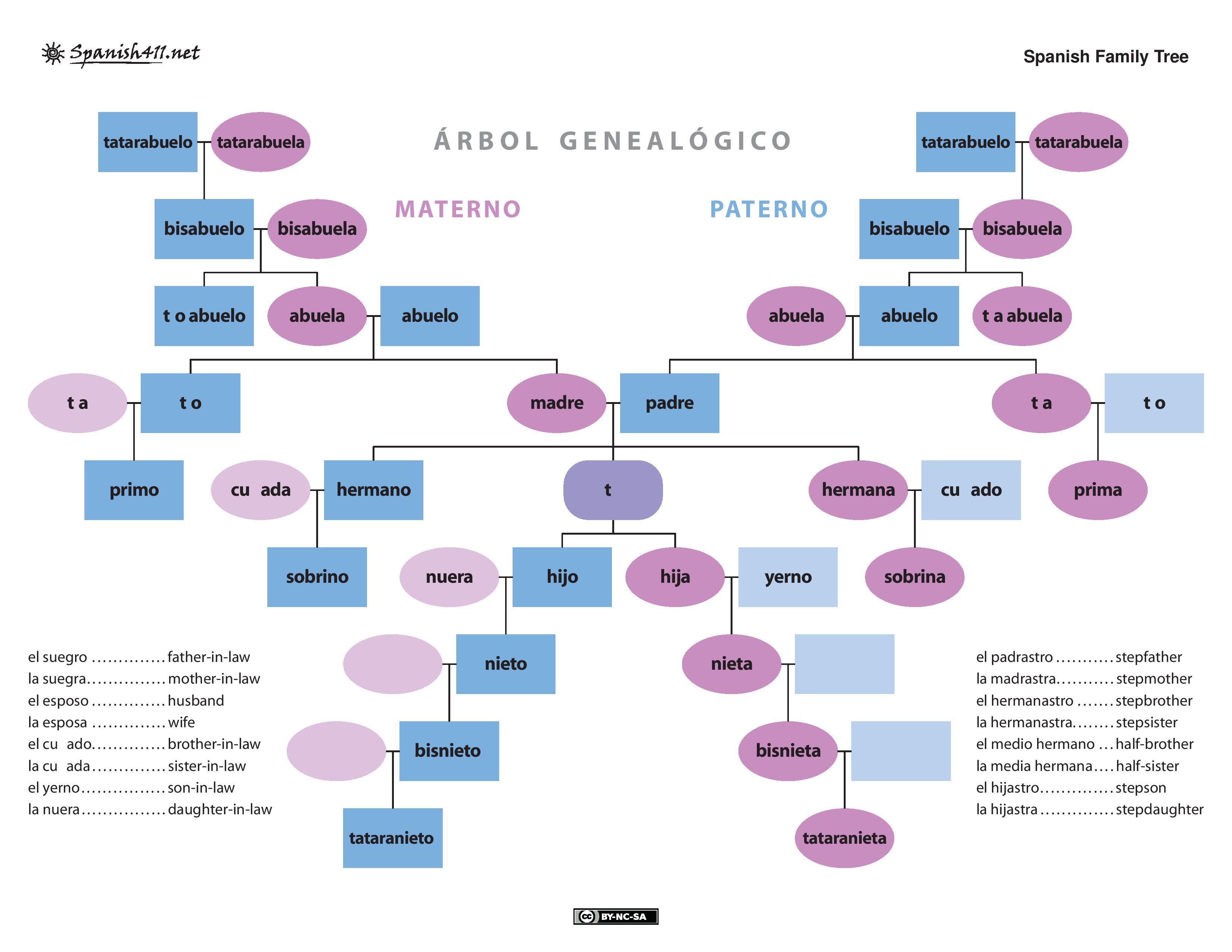 Spanish Family Tree Page 001 Planning Logic Studio