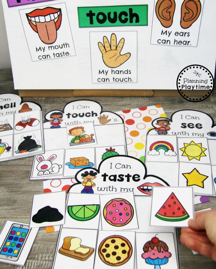 5 Senses Sorting Game for Preschool #5senses #preschoolthemes #preschoolcenters #planningplaytime