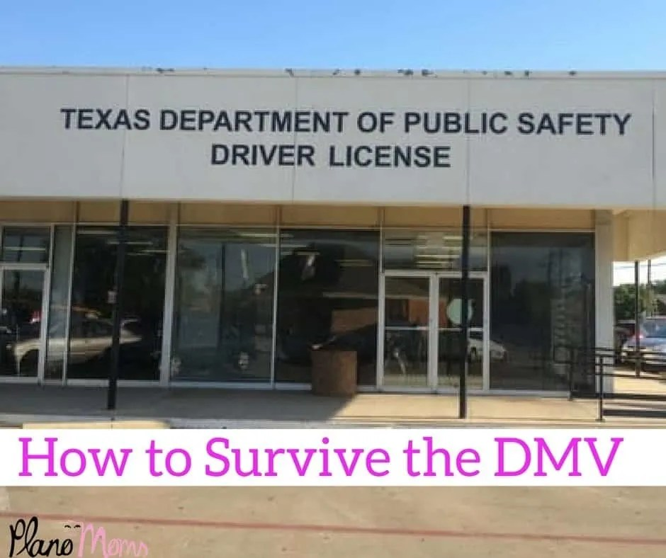 How to Survive the DMV