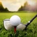 golf tee green ball club