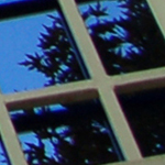 Green window film