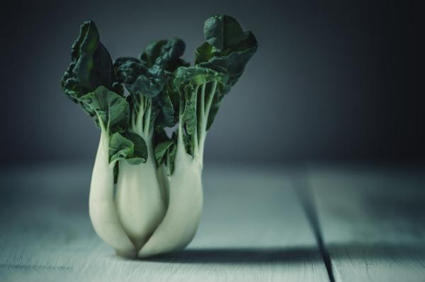 Bok Choy is one of the vegetables rich in calcium.
