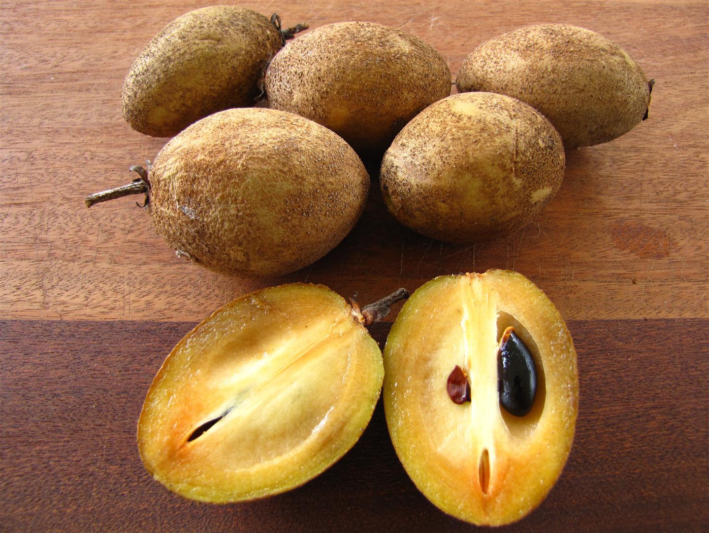 Fruit Tree Nursery Wholesale