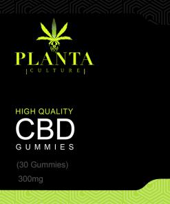 High Quality CBD Gummies – 300mg (30 gummies)