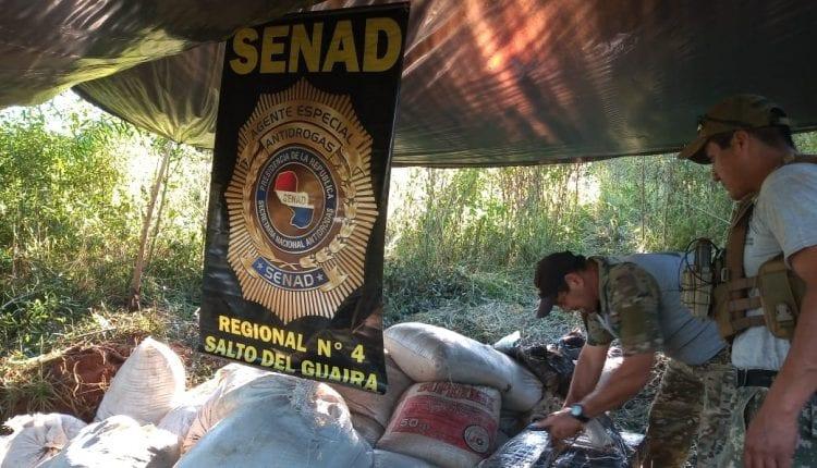 Polícia apreende mais de uma tonelada de maconha em fazenda na fronteira de MS