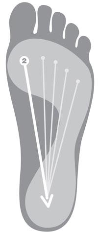 http://s.doctoroz.com/sites/default/files/im_uploads/hitzmann_foot_move4.jpg