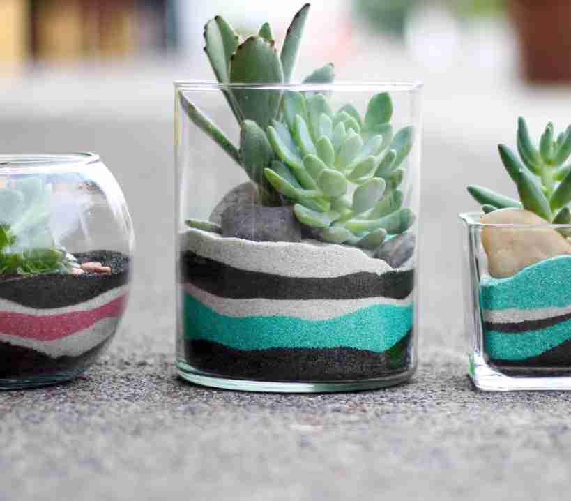 como hacer un terrario