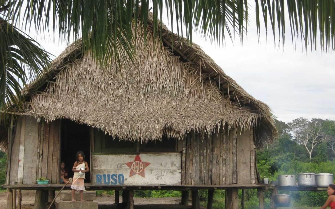 Dsoppineje: Sistema de salud Madija (Kulina) y el uso de sustancias sagradas