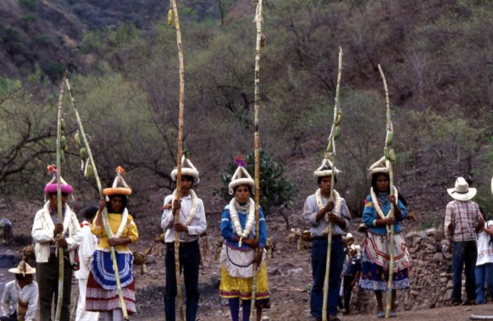 Jix xidhuukam: plantas y lugares sagrados en la cosmovisión de los o'dam del sureste de Durango