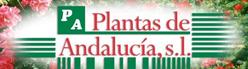 Plantas de Andalucia