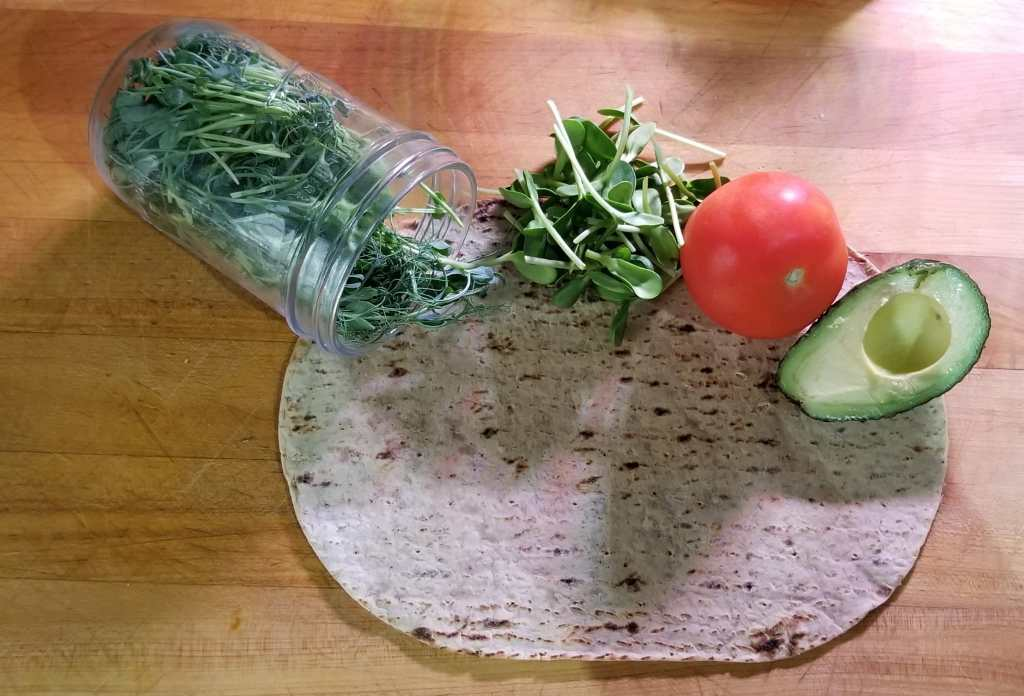 Make your own protein wrap