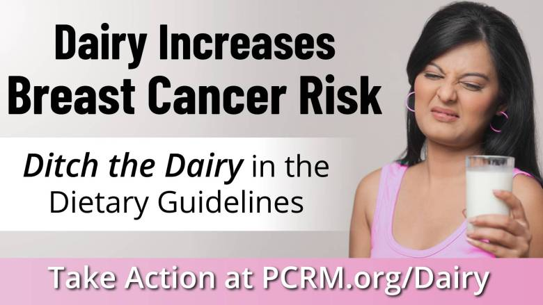 Dairy increases breast cancer risk