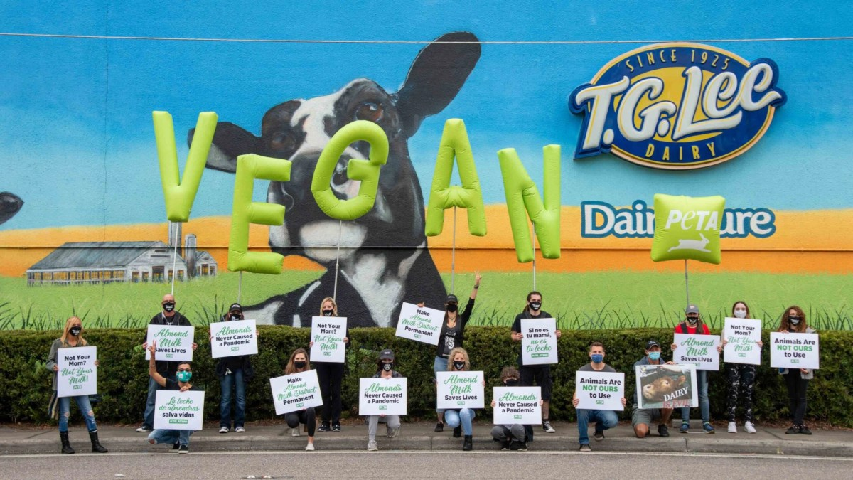 PETA supporters take to US dairy plant to encourage people to go vegan: rebranding the community the 'Almond Milk District'