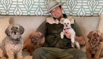 Actor Orlando Bloom with his dogd