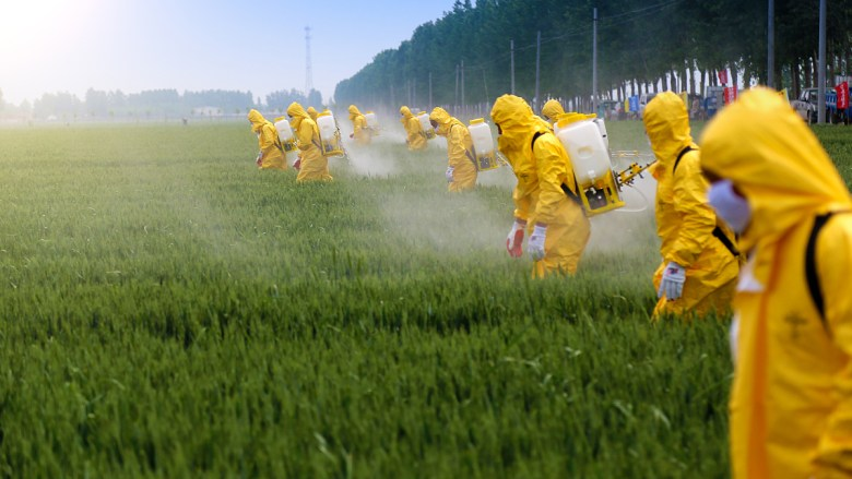 Workers spray crops with pesticide, a leading cause behind mass die-offs of bees. Is honey vegan?