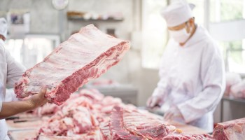Slash Meat Consumption And Support Vaccine Passports To Cut Threat Of Infectious Diseases, Expert Says