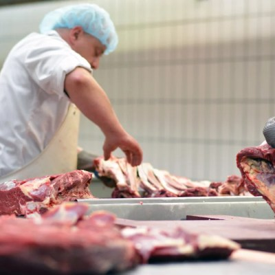 An investigation has revealed 'shocking' animal abuse on a government-approved slaughterhouse in the UK