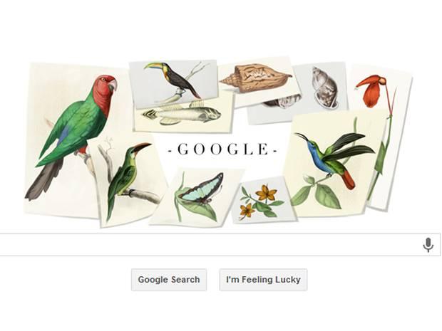 Google doodle naturalist