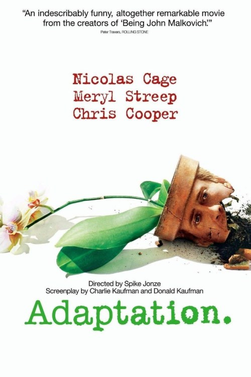 Adaptation film