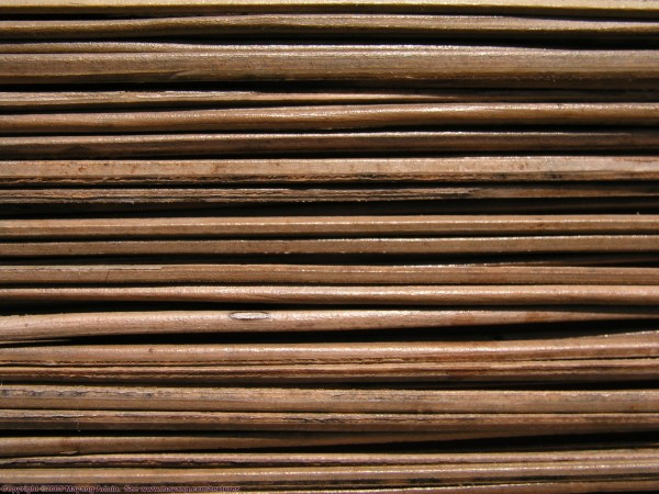 Free bamboo wood texture