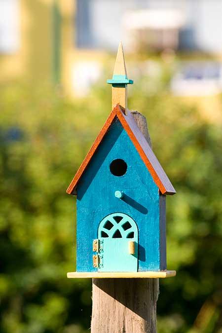 birdhouse-(1)