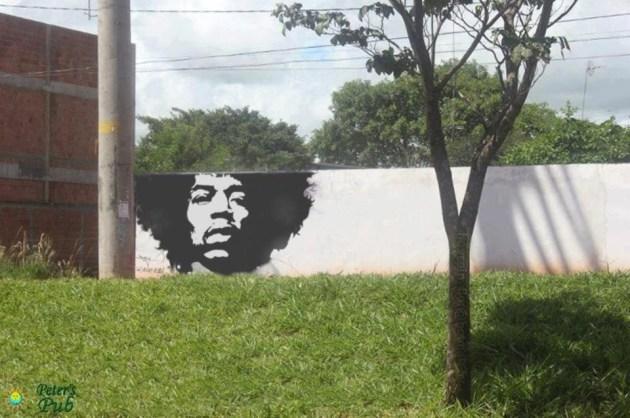Street Art uses Plants as Hair