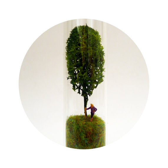 Miniature tree and forest