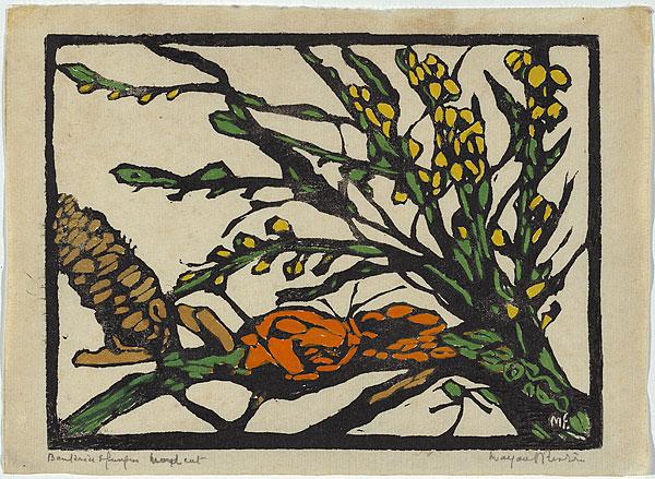 Margaret Preston Australian plant species