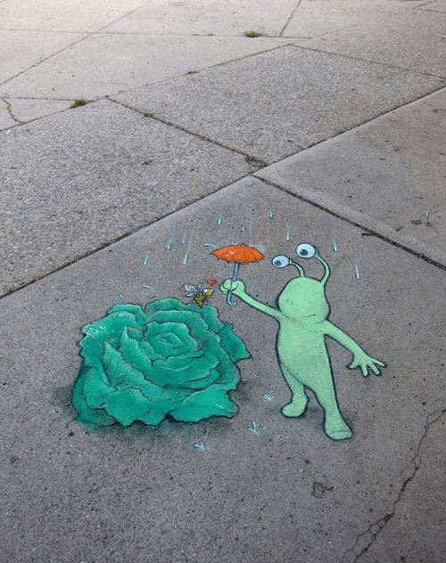 Sluggo and plants