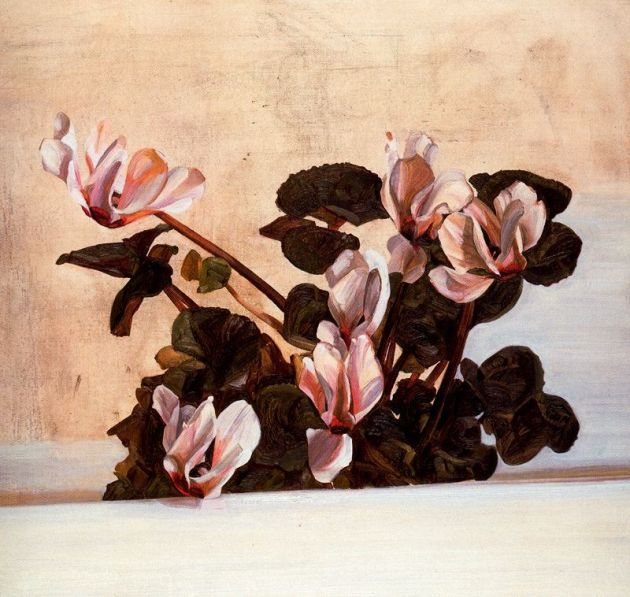 Cyclamen by Lucian Freud