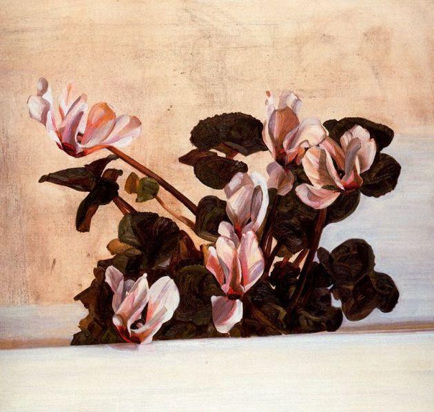 Cyclamen by Lucian Freud