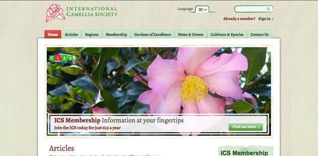 Camellia society