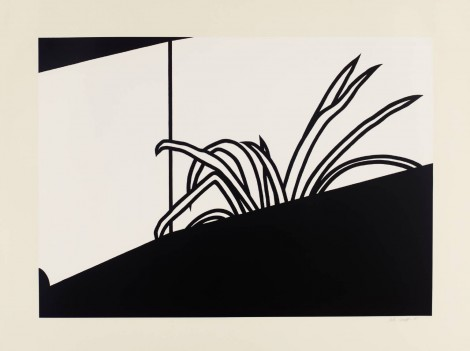 Patrick Caulfield's liking for plants