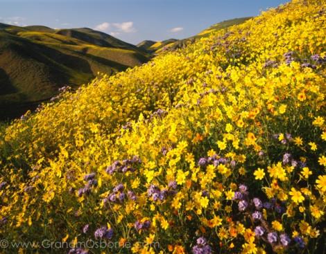 Interview with landscape photographer Graham Osborne