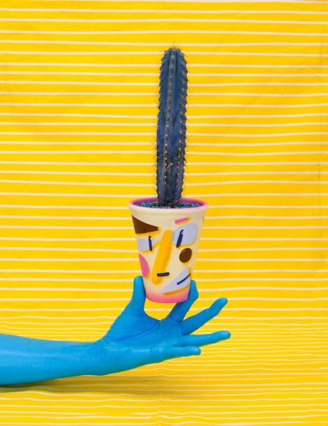 Cactus Pots by Ben Sanders