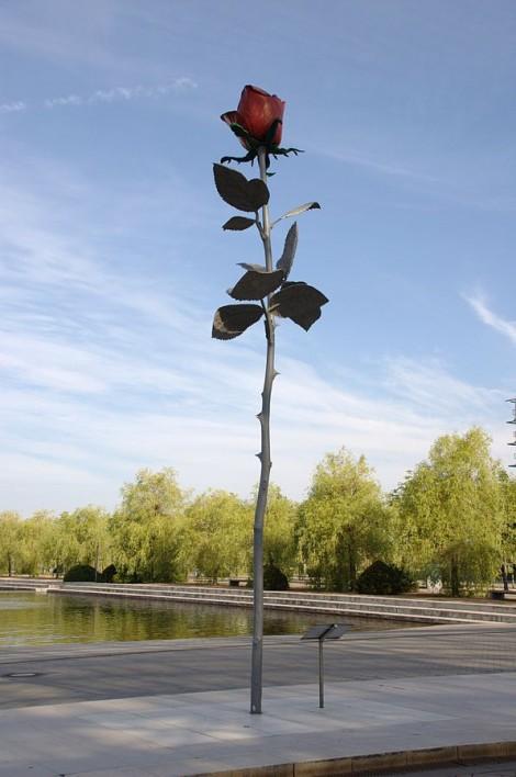 Genzken's Roses